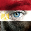 Human face painted with flag of Egypt - Stock Photo