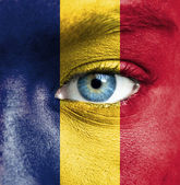 Human face painted with flag of Chad — Stock Photo