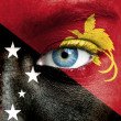 Stock Photo: Humface painted with flag of PapuNew Guinea