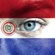 Human face painted with flag of Paraguay — Stock Photo