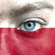 Human face painted with flag of Poland — Stock Photo
