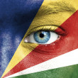 Stock Photo: Humface painted with flag of Seychelles