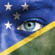 Stock Photo: Humface painted with flag of Solomon Islands