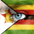 Human face painted with flag of Zimbabwe — Stock Photo #15406697