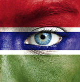 Human face painted with flag of Gambia — Stock Photo
