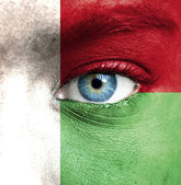 Human face painted with flag of Madagascar — Stock Photo