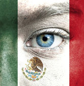 Human face painted with flag of Mexico — Stock Photo