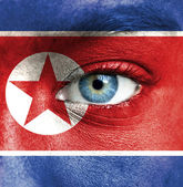 Human face painted with flag of North Korea — Stock Photo