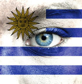 Human face painted with flag of Uruguay — Stock Photo