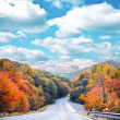 Empty road in autumn forest against blue sky - Stockfoto