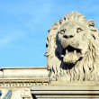 Stock Photo: Lion sculpture on the Szechenyi Chain Bridge in Budapest - Hunga