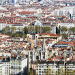 Stock Photo: View on city of Lyon - France