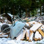 gammal skottkärra med trä loggar aginst skog - vinter tid conce — Stockfoto #16883565
