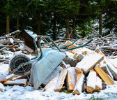 Old wheelbarrow with wood logs aginst forest - Winter time conce — Stock Photo