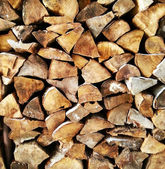 Wood logs background — Stock Photo