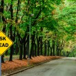 RISK AHEAD sign against road in green forest - Business concep — Stok fotoğraf