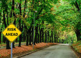 """RISK AHEAD"" sign against road in green forest - Business concep — Stock Photo"