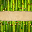 Bamboo background with blank paper — Stock Photo