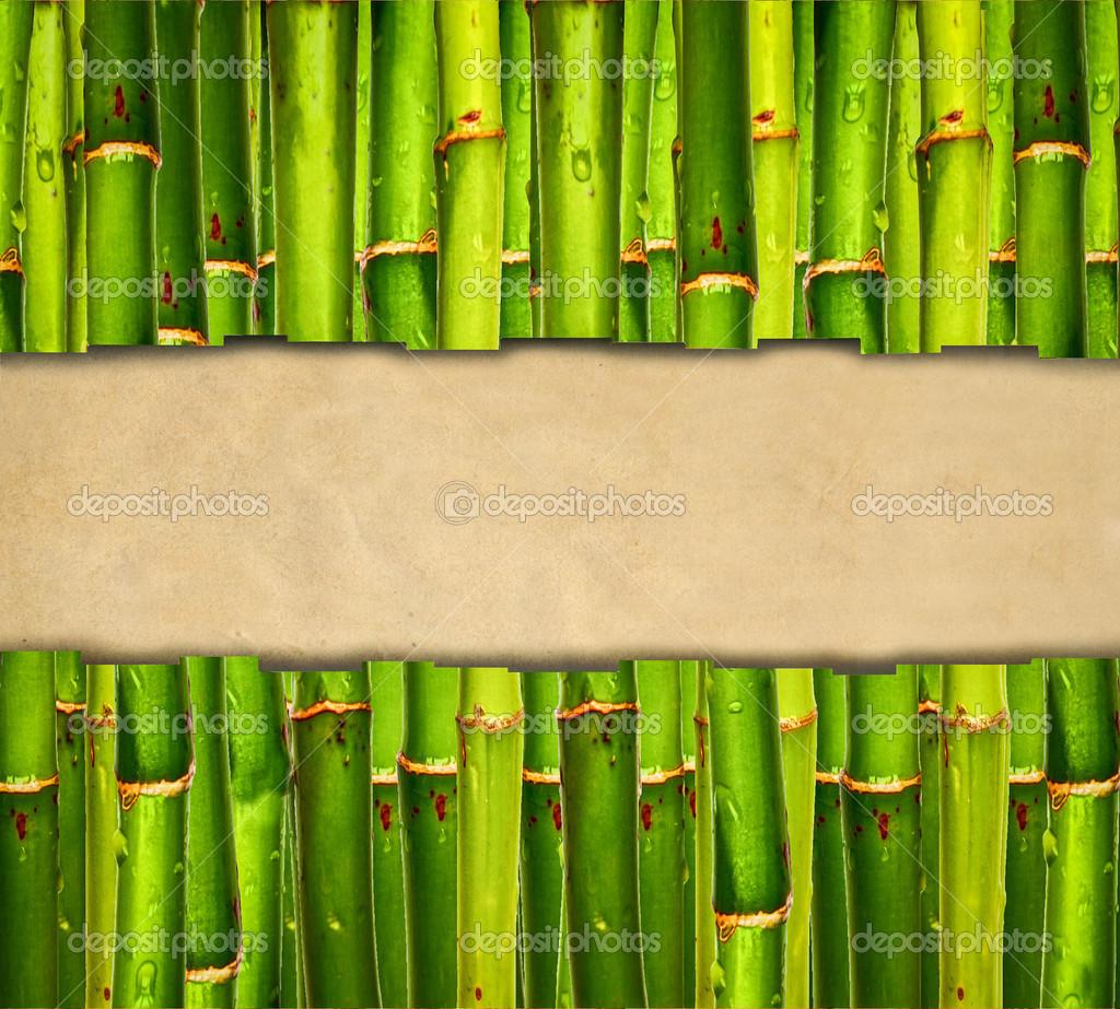 bambus hintergrund mit blankopapier stockfoto alexis84. Black Bedroom Furniture Sets. Home Design Ideas