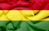 Bolivia waving flag — Stock Photo