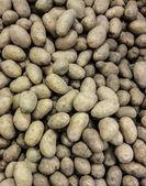 Potato background — Stock Photo