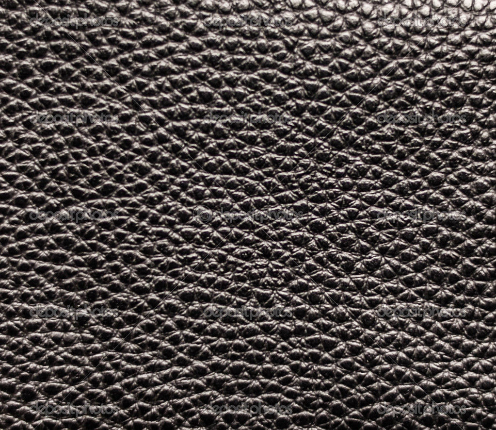 Pelle nera trama closeup — Foto Stock © Alexis84 #19482091 Dolphin Skin Texture