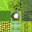 Stock Photo: Green collage