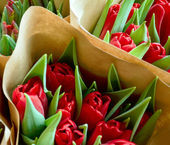 Roses bouqets — Stock Photo