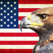 United States of America grunge flag and Golden Eagle — Stock Photo