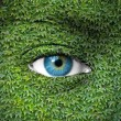 Royalty-Free Stock Photo: Blue human eye and ivy leaves - Green concept
