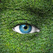 Blue human eye and ivy leaves - Green concept — Stock Photo