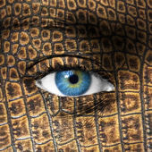 Human eye with lizard skin texture - Mutation concept — Stock Photo