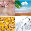 Four season conceptual collage - Stock Photo