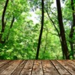 Stock Photo: Beautiful green forest with wood planks floor