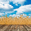 Royalty-Free Stock Photo: Wheat field and blue sky above wood floor