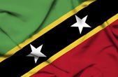 St Kitts and Nevis waving flag — Stock Photo