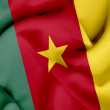 Cameroon waving flag — Stock Photo