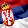 Serbia waving flag — Stock Photo #26501305