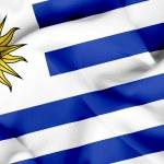 Uruguay waving flag — Stock Photo #26501691