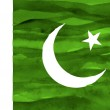 Painted flag of Pakistan — Stock Photo
