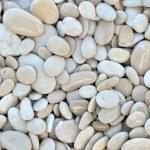 Pebble beach stones background — Stock Photo