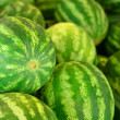 Stock Photo: Watermelon background