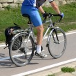 Stock Photo: Bicycle rider