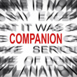 Stock Photo: Blured text with focus on COMPANION