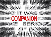 Blured text with focus on COMPANION — Stock Photo
