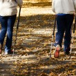 Senior couple making Nordic walking in park — Stock Photo