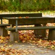 Autumn park with bench — Stock Photo