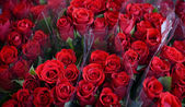 Bouquets of beautiful roses — Stockfoto