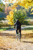 Biker driving at park in Autumn — Stock Photo