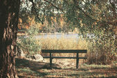 Dreamy image of park bench near lake — Stock Photo